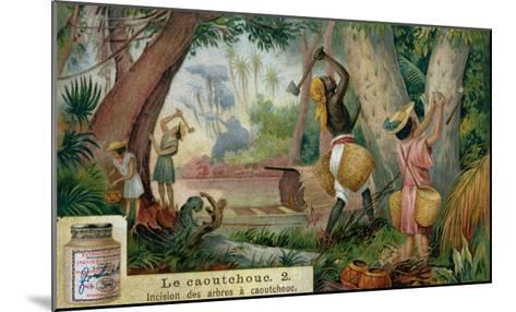 "Tapping Rubber Trees, Promotional Advertising Card for ""Veritable Extrait De Viande Liebig""--Mounted Giclee Print"