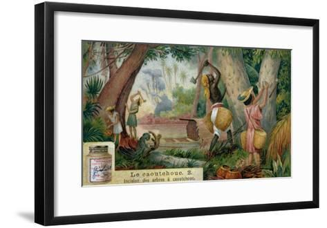 "Tapping Rubber Trees, Promotional Advertising Card for ""Veritable Extrait De Viande Liebig""--Framed Art Print"