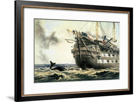 """Hms Agamemnon Laying the Original Atlantic Cable, from """"The Atlantic Telegraph""""-Robert Dudley-Framed Art Print"""