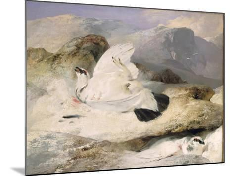 Ptarmigan-Edwin Henry Landseer-Mounted Giclee Print