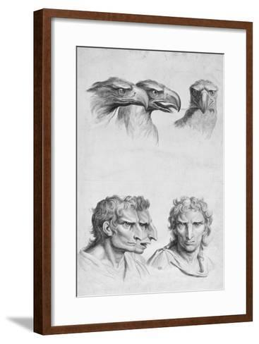 Similarities Between the Head of an Eagle and a Man-Charles Le Brun-Framed Art Print
