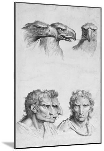Similarities Between the Head of an Eagle and a Man-Charles Le Brun-Mounted Giclee Print