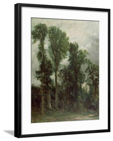 Trees at Hampstead-John Constable-Framed Art Print