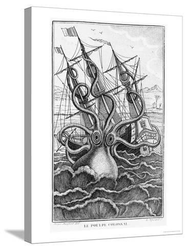 "Giant Octopus, Illustration from ""L'Histoire Naturelle Generale Et Particuliere Ses Mollusques""--Stretched Canvas Print"
