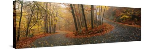 Winding Road Through Mountainside in Autumn, Monadnock Mountain, New Hampshire, USA--Stretched Canvas Print