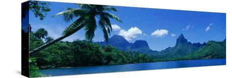 Lush Foliage and Rock Formations, Moorea Island, Tahiti--Stretched Canvas Print