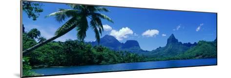 Lush Foliage and Rock Formations, Moorea Island, Tahiti--Mounted Photographic Print