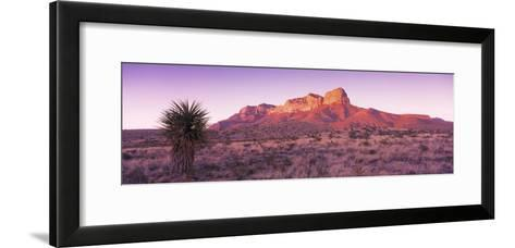 Morning, Mountain, National Park, Guadalupe Mountains, Texas, United States--Framed Art Print