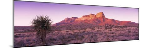 Morning, Mountain, National Park, Guadalupe Mountains, Texas, United States--Mounted Photographic Print