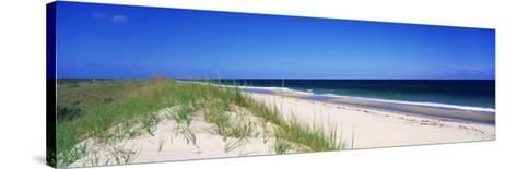 Cape Hattera National Park, Outer Banks, North Carolina USA--Stretched Canvas Print