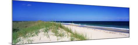 Cape Hattera National Park, Outer Banks, North Carolina USA--Mounted Photographic Print