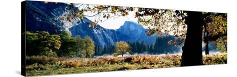 Half Dome, Yosemite National Park, California, USA--Stretched Canvas Print