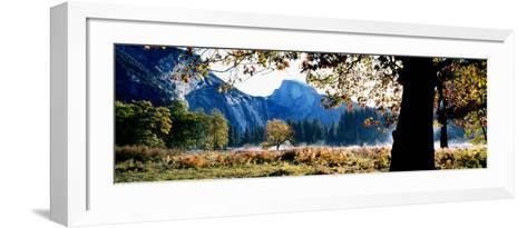 Half Dome, Yosemite National Park, California, USA--Framed Art Print