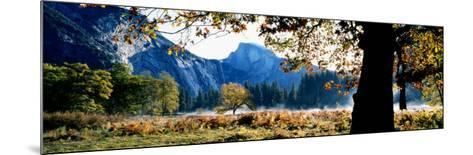 Half Dome, Yosemite National Park, California, USA--Mounted Photographic Print
