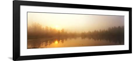 Misty Morning, Volvo Bog, Illinois, USA--Framed Art Print