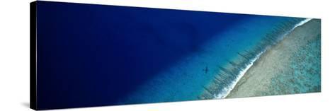 Aerial View of Beach, Teti'aroa Island, Polynesia--Stretched Canvas Print