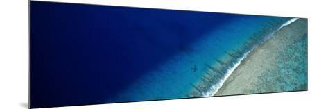 Aerial View of Beach, Teti'aroa Island, Polynesia--Mounted Photographic Print