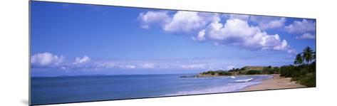 Gringo Beach, Island of Vieques, Puerto Rico--Mounted Photographic Print