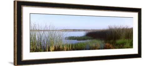 Pond, Half Moon Bay, California, USA--Framed Art Print