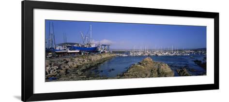 Boats Docked at a Harbor, Marina, Monterey, California, USA--Framed Art Print