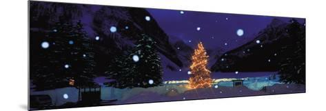 Tree with Lights and Chateau, Lake Louise, Alberta, Canada--Mounted Photographic Print