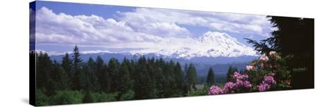 Mount Rainier and Spring Rhododendrons, Graham, Washington State, USA--Stretched Canvas Print