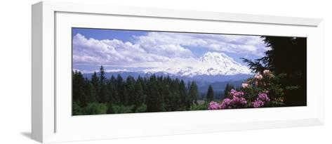 Mount Rainier and Spring Rhododendrons, Graham, Washington State, USA--Framed Art Print