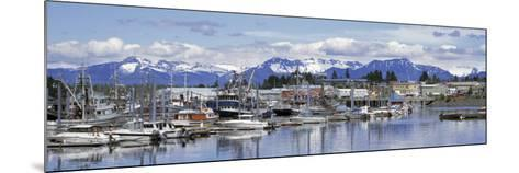 View of Boats Stationed on a Harbor, South Harbor, Petersburg, Alaska, USA--Mounted Photographic Print