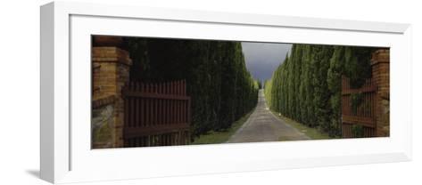 Road, Tuscany, Italy--Framed Art Print