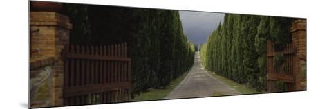 Road, Tuscany, Italy--Mounted Photographic Print