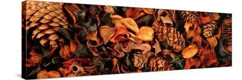 Close-up of Potpourri--Stretched Canvas Print
