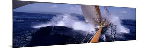 Yacht Race, Caribbean--Mounted Photographic Print