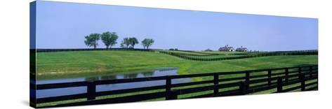 Horse Farm, Kentucky, USA--Stretched Canvas Print