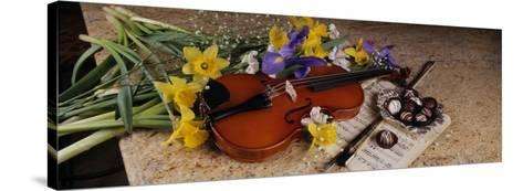 High Angle View of a Violin with Flowers--Stretched Canvas Print