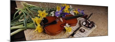 High Angle View of a Violin with Flowers--Mounted Photographic Print
