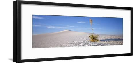 Soaptree Yucca, White Sands National Monument, New Mexico, USA--Framed Art Print