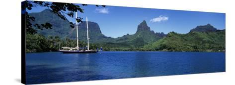 Sailboats Sailing in the Ocean, Opunohu Bay, Moorea, French Polynesia--Stretched Canvas Print