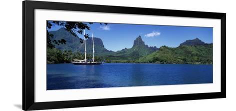 Sailboats Sailing in the Ocean, Opunohu Bay, Moorea, French Polynesia--Framed Art Print