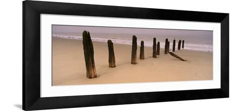 Logs on the Beach, Spurn, Yorkshire, England, United Kingdom--Framed Art Print