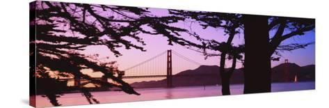 Suspension Bridge Over Water, Golden Gate Bridge, San Francisco, California, USA--Stretched Canvas Print
