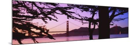 Suspension Bridge Over Water, Golden Gate Bridge, San Francisco, California, USA--Mounted Photographic Print