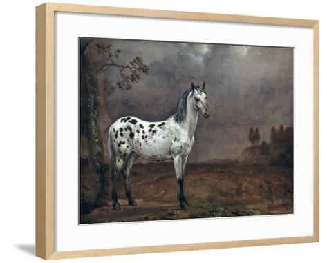 The Piebald Horse, 1653-Paulus Potter-Framed Art Print