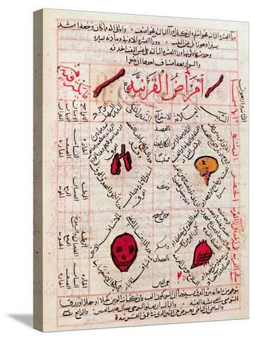 "Page from the ""Canon of Medicine"" by Avicenna--Stretched Canvas Print"