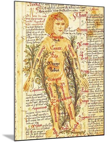 """Influence of the Stars on Illnesses of the Human Body, from """"Tractatus de Pestilencia""""-M. Albik-Mounted Giclee Print"""