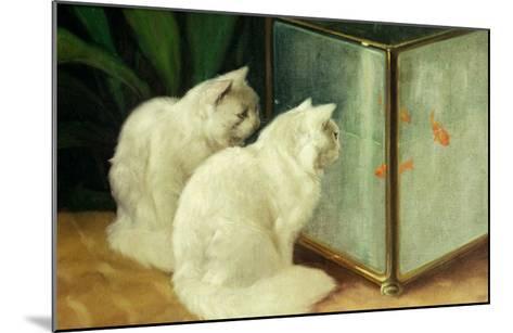 White Cats Watching Goldfish-Arthur Heyer-Mounted Giclee Print
