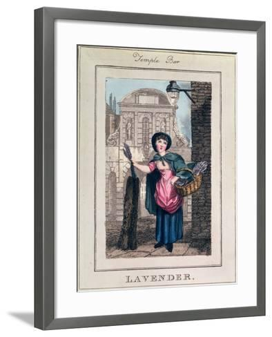 """Lavender, Temple Bar, from """"Cries of London"""", Pub. by Richard Phillips 1804-William Marshall Craig-Framed Art Print"""