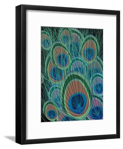 Peacock Feathers--Framed Art Print