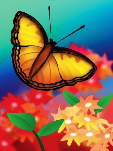 Butterfly--Stretched Canvas Print