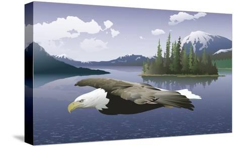 A Bald Eagle Flying Over a Lake--Stretched Canvas Print