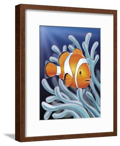 A Clown Fish Swimming by Sea Anemones--Framed Art Print